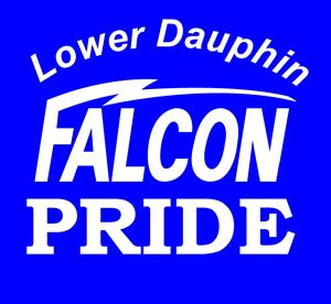 Lower Dauphin Falcon Pride